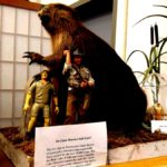 26 weird museums you will see around the ultimate mixcountry journey